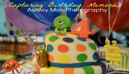 Ashley Mak Photography - Kids Birthday Party & Events Photographer