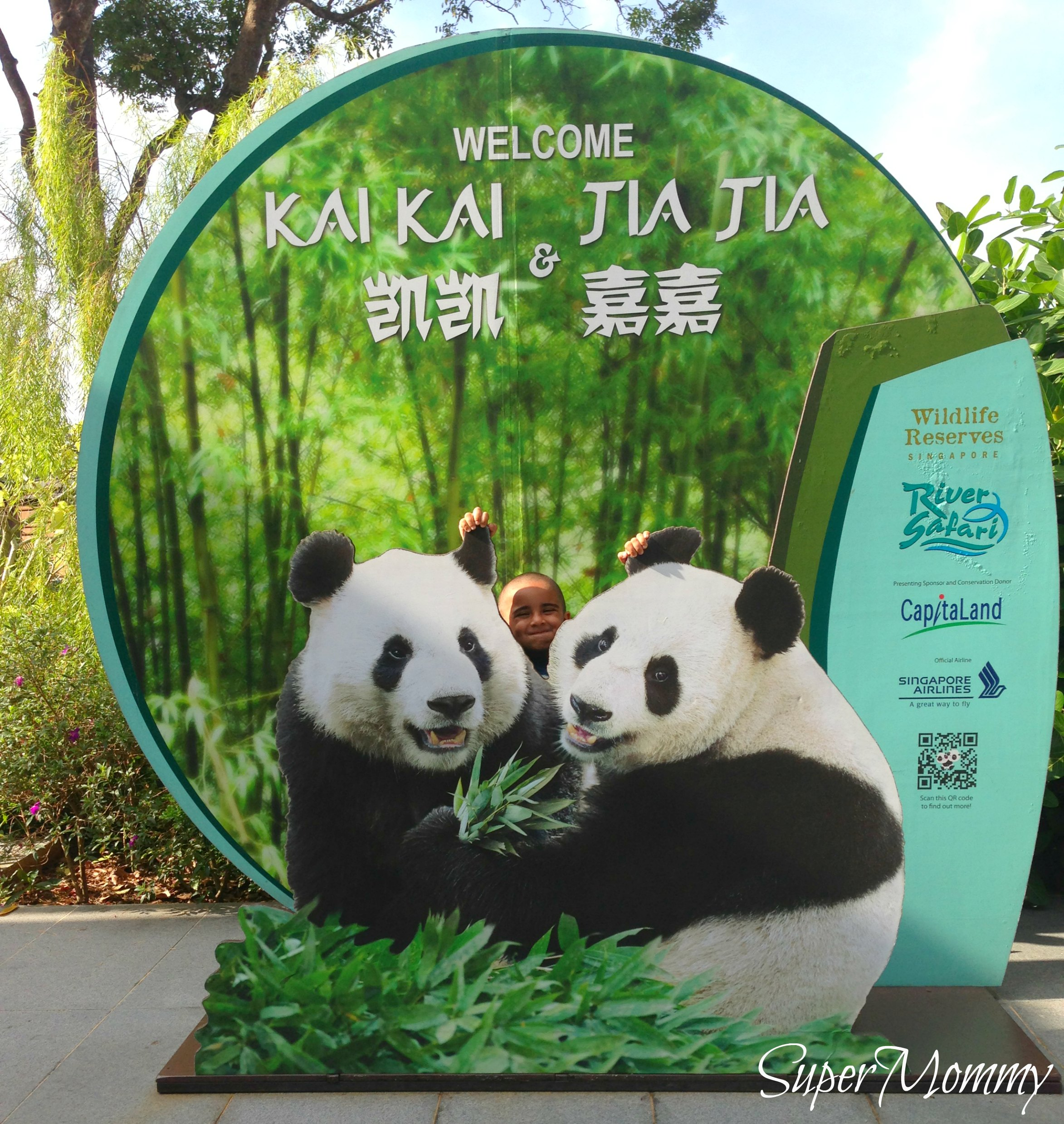 A Review of the River Safari at the Singapore Zoo
