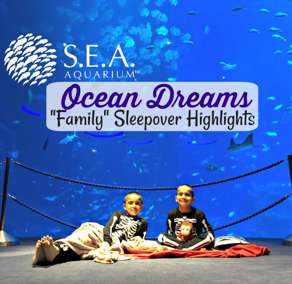 Ocean Dreams Sleepover Resorts World SEA Aquarium Singapore Kids Activities Slumber Party Kids Birthday Ideas