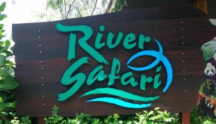 Singapore Zoo - River Safari