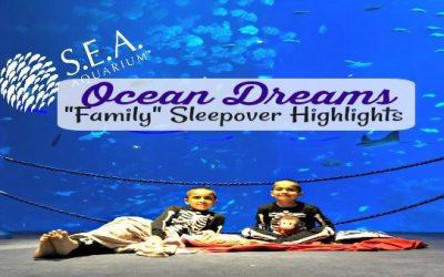 """Our """"Ocean Dreams"""" Family Sleepover at the S.E.A. Aquarium"""