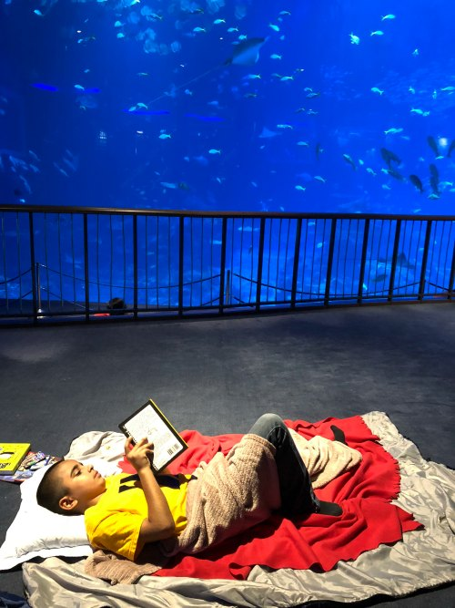 Review Ocean Dreams Sleepover Resorts World SEA Aquarium Singapore Kids Birthday Venue Sentosa