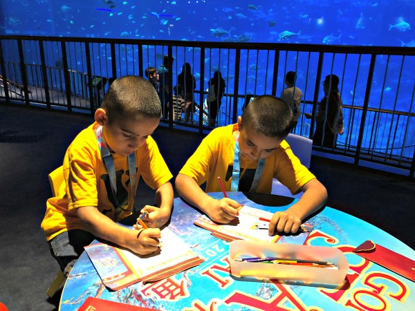Ocean Dreams Sleepover Resorts World SEA Aquarium Singapore Kids Activities Places to visit