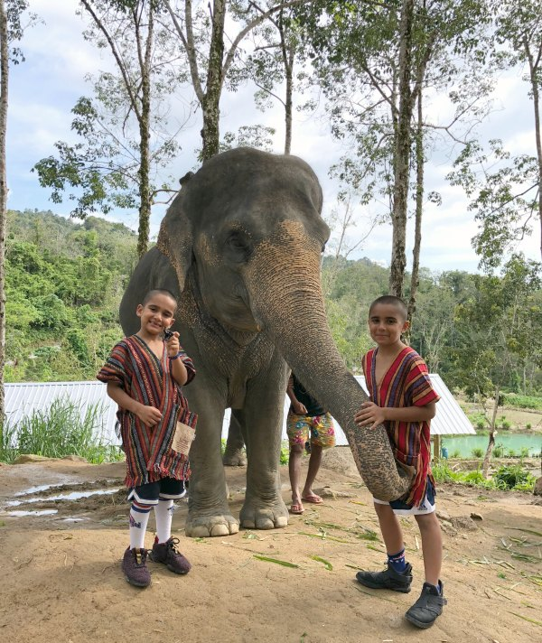 Elephant Jungle Sanctuary Review - Things to do in Phuket Chiang Mai Thailand with Kids, Babies, Toddlers 2