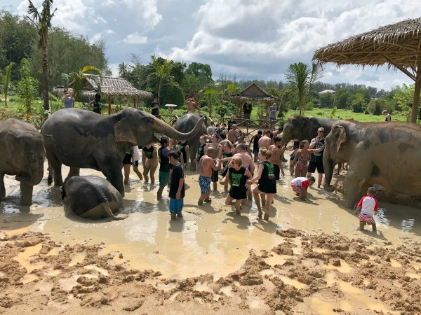 Elephant Jungle Sanctuary Review - Things to do in Phuket Chiang Mai Thailand with Kids, Babies, Toddlers