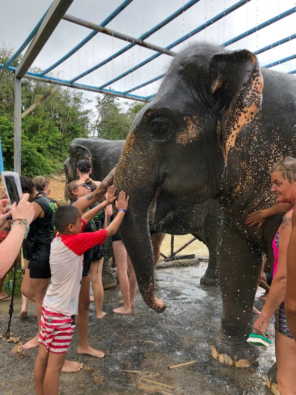 Elephant Jungle Sanctuary Reviews - Things to do in Phuket Chiang Mai with Kids 4
