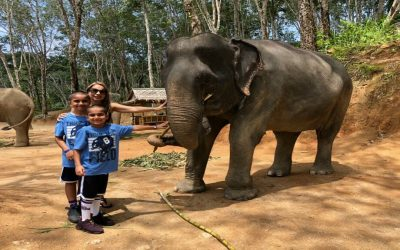 "Visiting the ""Elephant Jungle Sanctuary"" in Thailand with Kids"